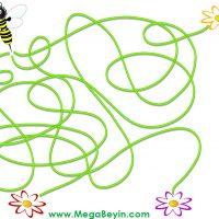Beyin Haritası – Arılar Beyin Haritalarını Kullanıyor