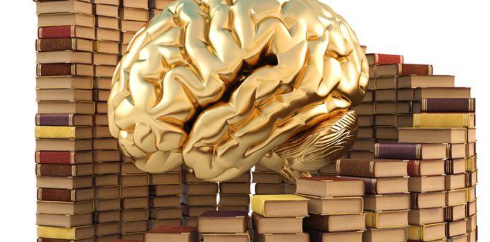 Edebiyat – İnsan Beynini Etkileyen 10 Roman