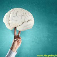 Beyin Hafıza İlişkileri Kurarak Öğreniyor