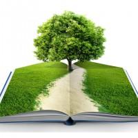 OKUDUKTAN SONRA EKİLİNCE AĞAÇ OLAN KİTABI DUYDUNUZ MU?