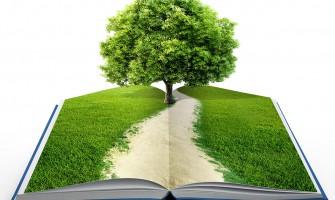 Kitap Ağaç – Okuduktan Sonra Eklince Ağaç Olan Kitabı Duydunuz mu?