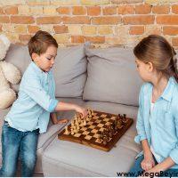 Yaş ve Zeka – Doğum Sırasına Göre Büyük Çocuklar Daha mı Zeki?