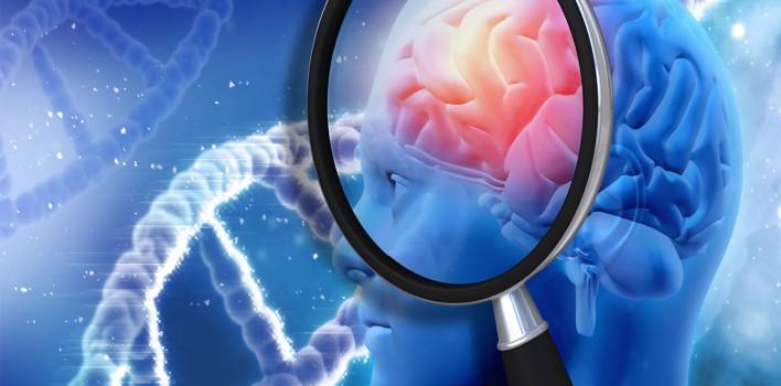 Alzheimer – Korunmak İçin Çift Dil Öğrenin ve Konuşun