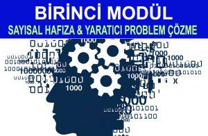 Birinci Modül - Istanbul Yaz Okulu