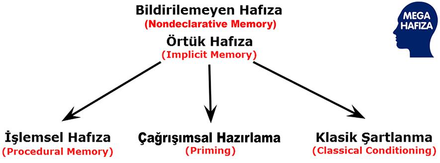 Nondeclarative memory / Implicit Memory - Bildirilemeyen Hafıza / Örtük Bellek / Deklaratif Olmayan Hafıza