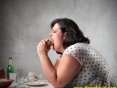 Obezite – Obezlerin Hafızaları Neden Daha Zayıftır?