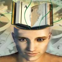 Hafıza İlişkileri – Beyindeki Kataloglama Sistemi Nedir?