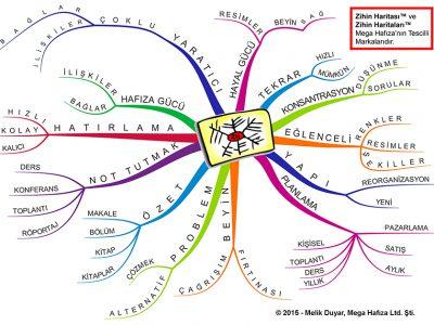 Beyin Haritaları Nedir – Kalıcı Öğrenme İçin Beyninizi Şekillendirin