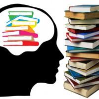 Beyin ve Kitap – İnsan Beynine Kaç Kitap Sığar?
