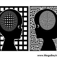 Beyin ve Cinsiyet – Beyninizin Cinsiyeti Nedir?