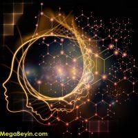 Çocuk Beyni – Bu Çocukların Beyni Farklı Çalışıyor!